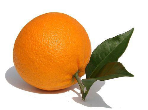 Orange valencia campbell