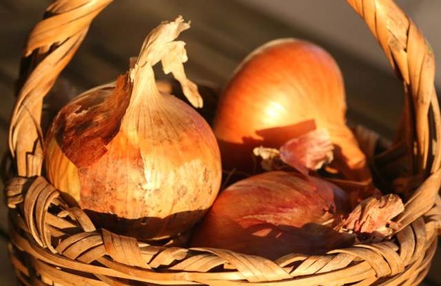 http://olharfeliz.typepad.com/photos/uncategorized/2008/11/11/onions_basket_panier_doignons.jpg