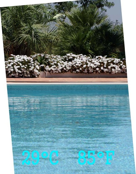 Pool_piscine_picina