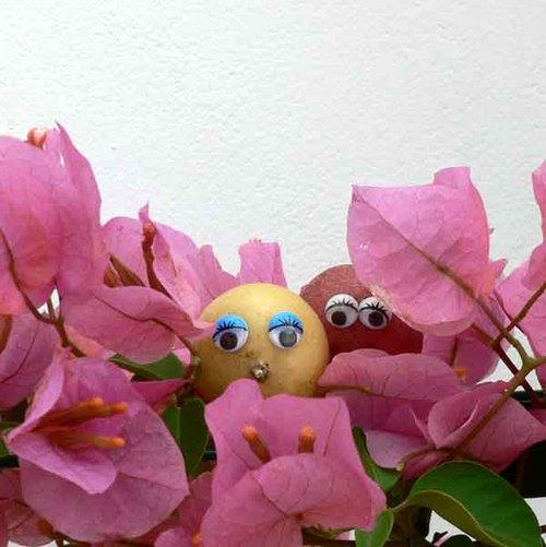 Ensemble_dans_les_fleurs