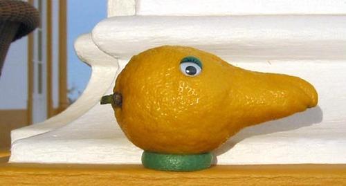 Lemon_2_1
