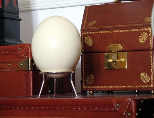 Ostrich_egg_stand